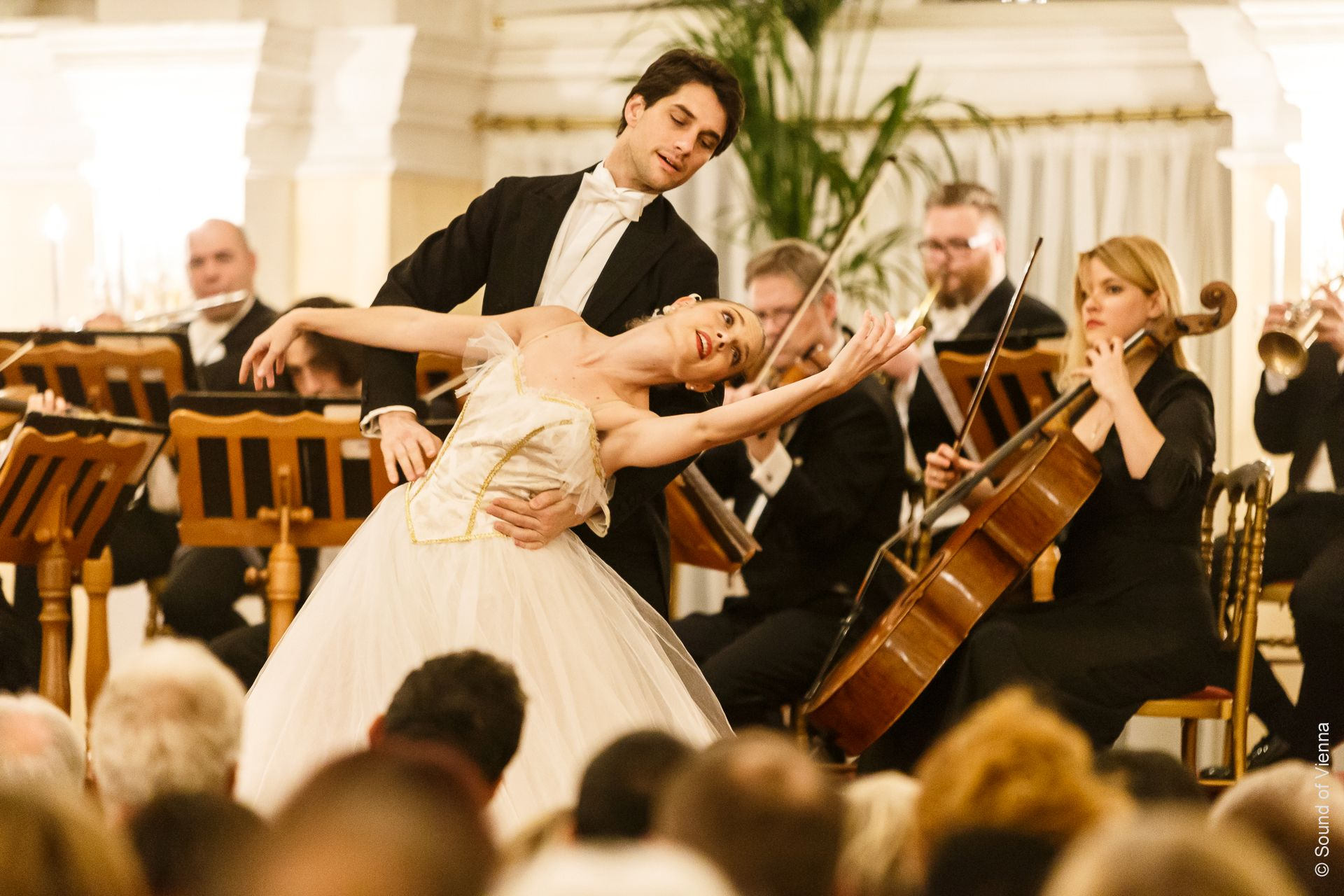 Concierto de Mozart y Strauss + Billete Hop On Hop Off (Category VIP) - Alojamientos en Viena